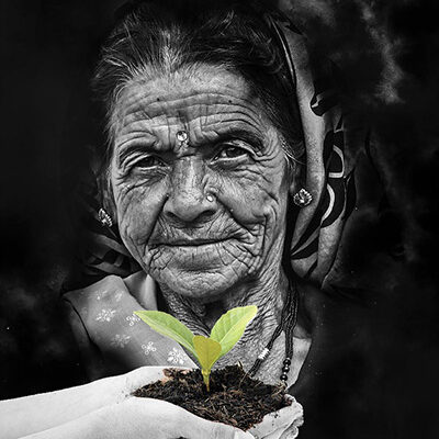 Sowing the seeds of the future in our Crone-time