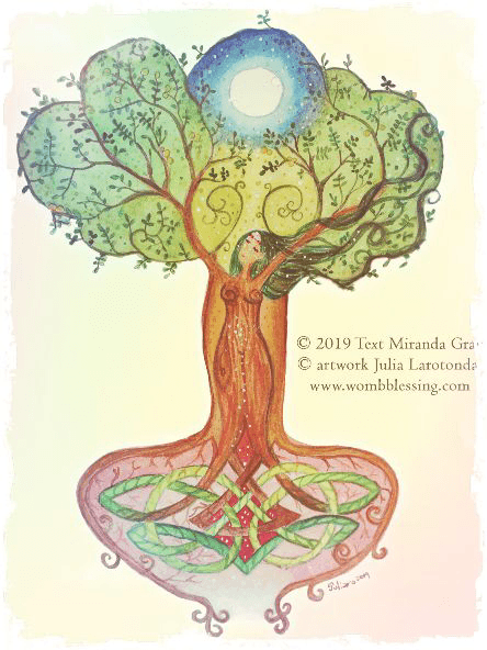Womb Tree Certificat